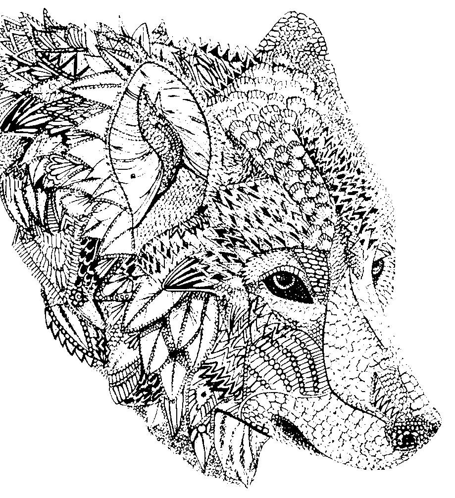 Раскраска антистресс морда волка | Раскраски для детей ...